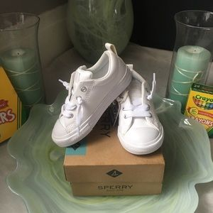 Chuck Taylor All Star Low Top Sneaker Toddler